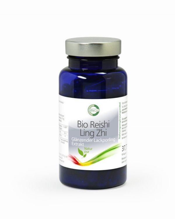 Bio Reishi / LingZhi – Glänzender Lackporling Extrakt